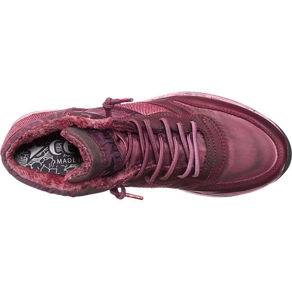 Cetti Cetti Sneakers bordeaux