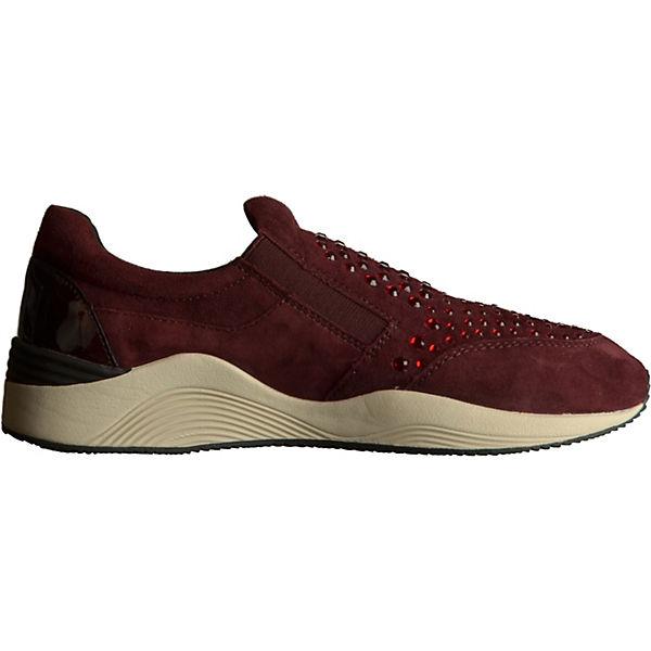 Sneakers GEOX bordeaux GEOX GEOX GEOX qw7tZTt