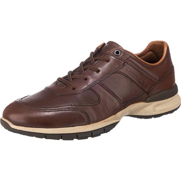 LLOYD LLOYD Aston Sneakers dunkelbraun