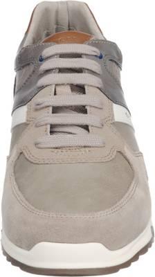 GEOX, Wilmer Sneakers Low, grau | mirapodo