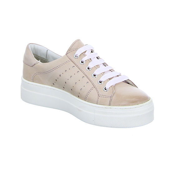 81 BOXX 231 Sneakers rosa Low vCdCfwq