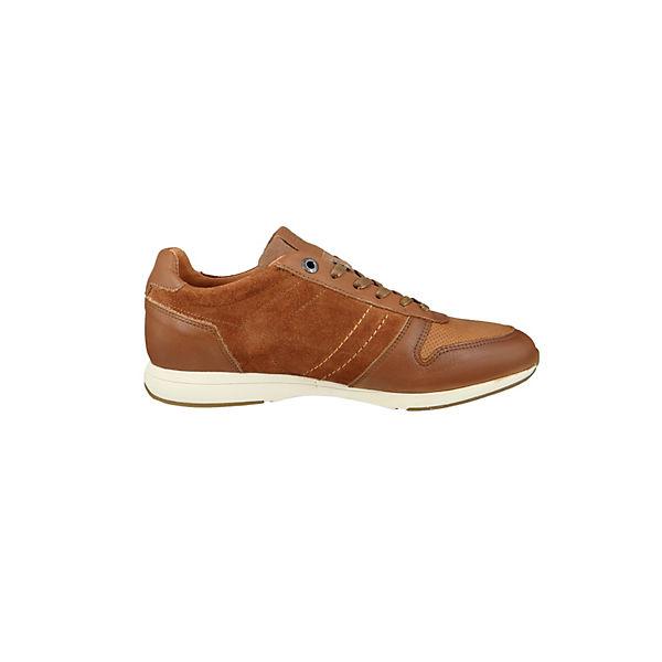 Levi's® Bristol Sneakers Low braun  Gute Qualität beliebte Schuhe