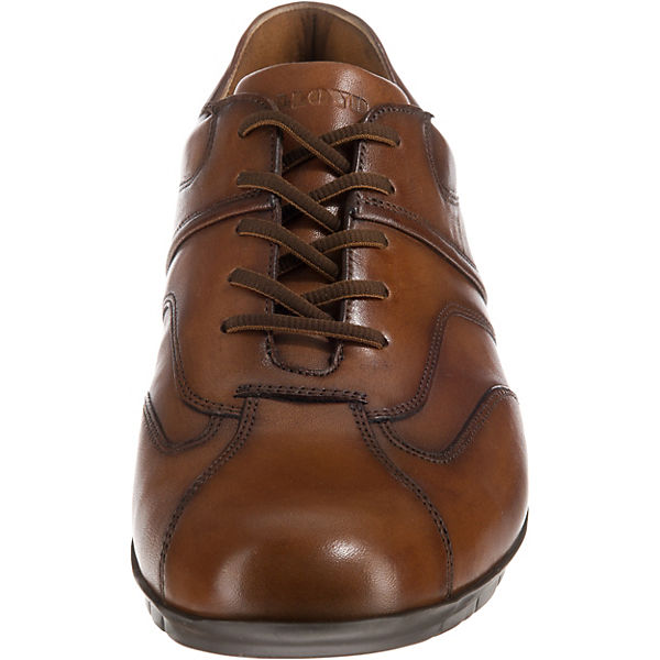 Archie Archie LLOYD LLOYD Low Sneakers Low cognac Sneakers 6gq5Rw7