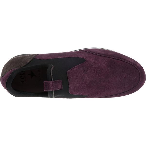 Cetti Sneakers Sneakers Low Cetti kombi lila 1wSCqR