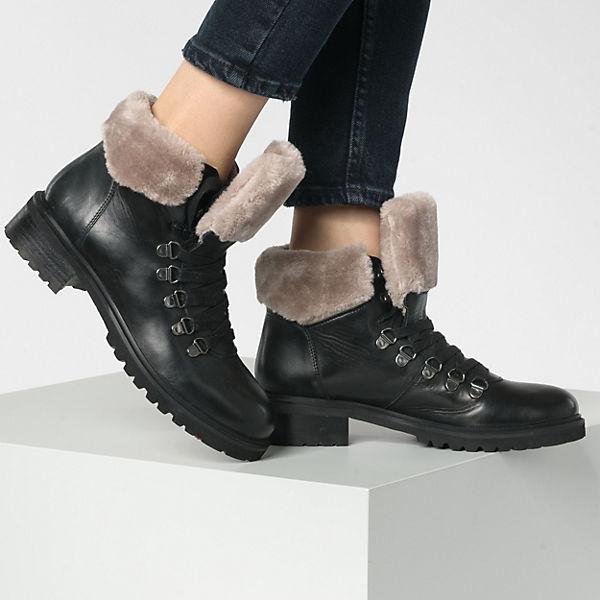 STEVE MADDEN, Tree Winterstiefeletten, schwarz  Gute Qualität beliebte Schuhe